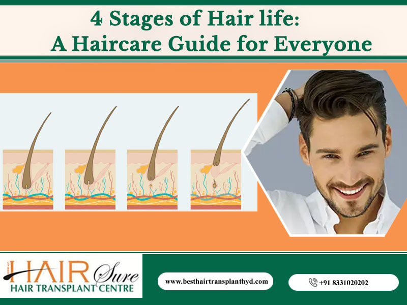 4 Stages of Hair life: How you can keep your hair healthy in all four phases